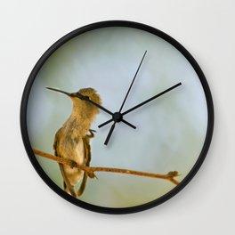 Itchy Bird Wall Clock