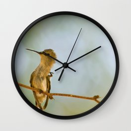 Itchy Bird Wall Clock