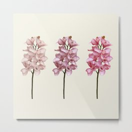 Three tones orchids Metal Print