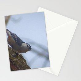 NutHatch Part I Stationery Cards