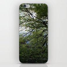 Before the Rain iPhone & iPod Skin