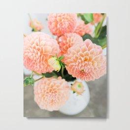 Coral Dahlias 03 Metal Print