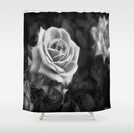 Pink Roses in Anzures 1 B&W Shower Curtain