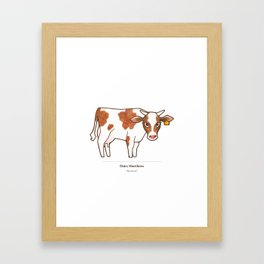 Dairy Shorthorn Framed Art Print