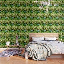 Lime Tree Butterfly II Wallpaper
