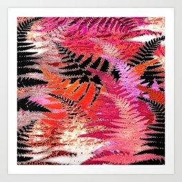 Ferns, Morning Blush Art Print