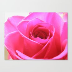 Pink Roses #3 Canvas Print