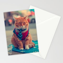 Tie Beige Cat Sitting Begging Stationery Cards