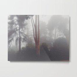 Stand out in the fog Metal Print