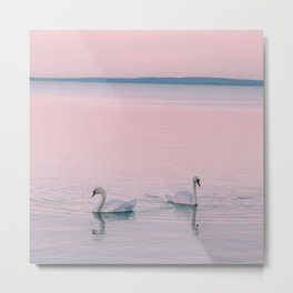 Swan Lake | Landscape Photography | Print Art Metal Print