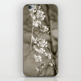 Stages of Spring iPhone Skin