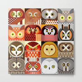 North American Owls Metal Print