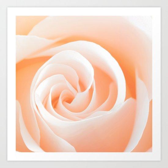 Rose´s heart I- Beautiful roses flower in pink Art Print