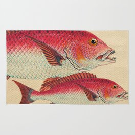 Fish Classic Designs 7 Rug