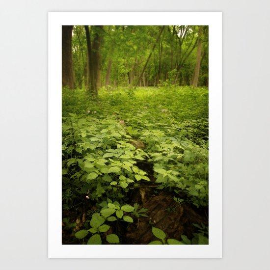 the soil underneath Art Print