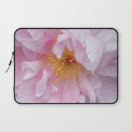 Pink Confection Laptop Sleeve