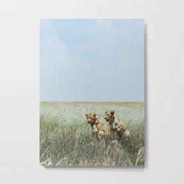 Serengeti National Park, Tanzania X Metal Print