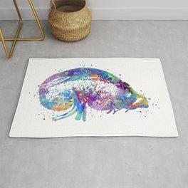 Kidney and Adrenal Gland Art Nephrologist Gift Colorful Blue Purple Artwork Clinic Art Decor Rug