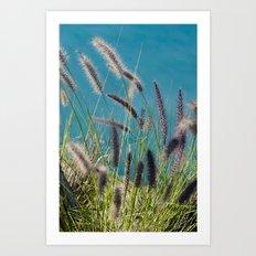 Thin herbs Art Print