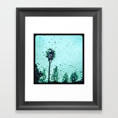 Trees amidst the rain drops. Framed Art Print