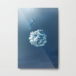 Underwater Discovery Metal Print