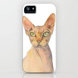 Sphynx Cat Watercolor Portrait iPhone Case