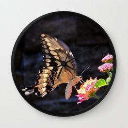 Swallowtail Overexposed Wall Clock