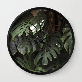 Monstera - botanical photography Wall Clock