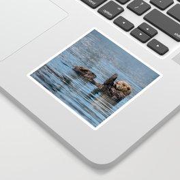 Sea_Otter I - Kachemak_Bay, Alaska Sticker