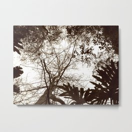 Memories of Endor 2 (B&W) Metal Print