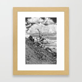 Mt.Baldy_10-01-2011_1116 Framed Art Print