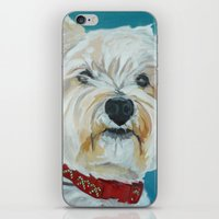 westie iPhone & iPod Skins featuring Jesse the Beautiful Westie by Barking Dog Creations Studio
