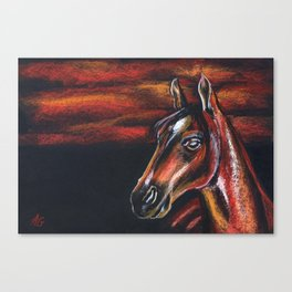 Red horse_Pastel drowing Canvas Print