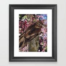 Xenop Framed Art Print