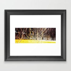 Nature finds the way inside... and outside... Everywhere! Framed Art Print