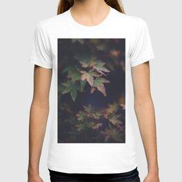 Hints of Autumn T-shirt