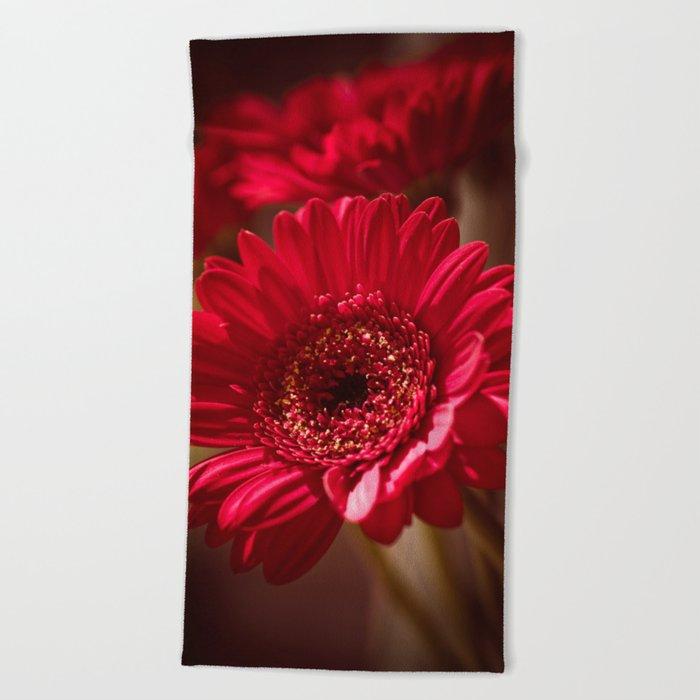 Beautiful Red Gerbera Beach Towel