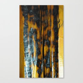 Wyoming Yellowstone Wildfire Log  Canvas Print