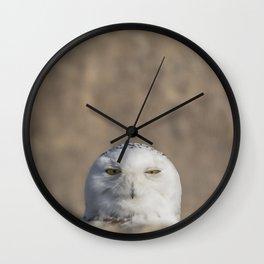 Peekaboo Snowy Owl Wall Clock