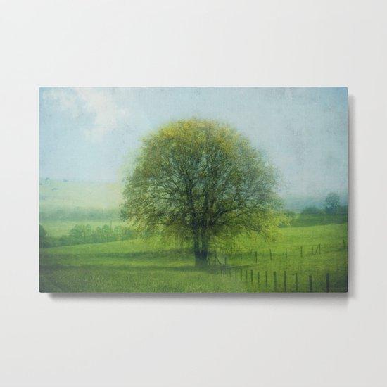 15 x oak Metal Print