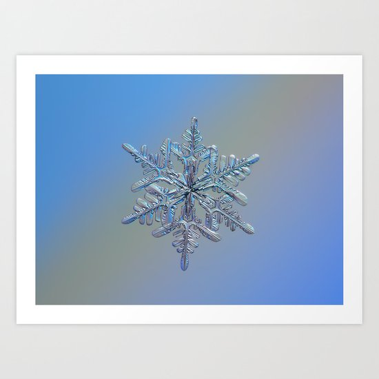 Real snowflake macro photo - 13.02.17 1 Art Print