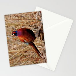 Pheasant Stationery Cards