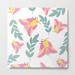 Rosy Maple Moth Metal Print