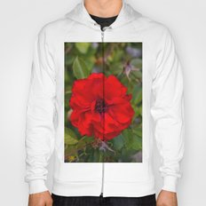 Vibrant Red Flower Hoody