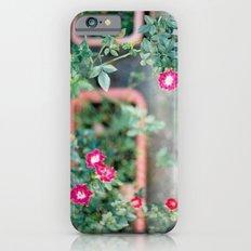 Roadside Flowers iPhone 6s Slim Case