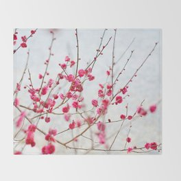 Beautiful Cherry Blossoms at the Imperial Palace in Kyoto, Japan Throw Blanket