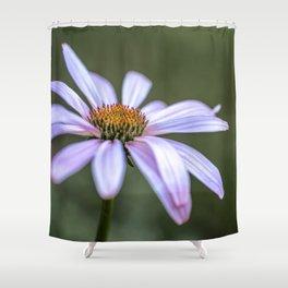 Echinacea flower up close Shower Curtain