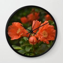Pomegranate in bloom Wall Clock