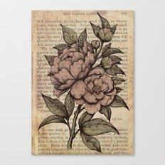 Peonies  - Color Canvas Print