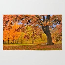 Fall at Larz Anderson Rug